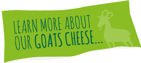 Learn More About Our Goats' Cheese