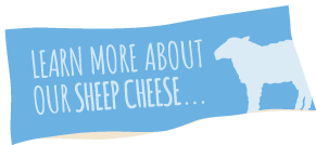 Learn More About Our Sheep Cheese